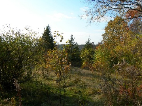 home building lots lots for sale MA